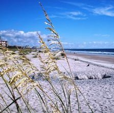 Sea Oats Lace Beachfront, Amelia Island Plantation Resort, Florida