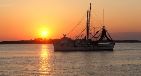 Fernandina Beach Shrimp Boat Sunset Amelia River