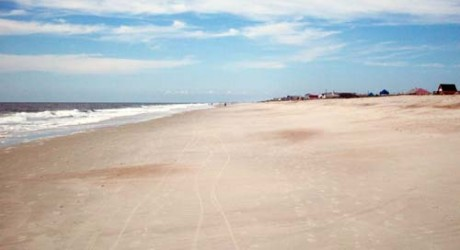 Travelers Love Amelia Island, Voted Top 10 Islands in USA