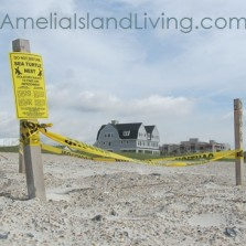 Photo: Amelia Island Sea Turtle Nest Near Elizabeth Pointe Lodge (July 1, 2013).