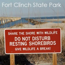 Fort Clinch Sign Share The Shore With Wildlife