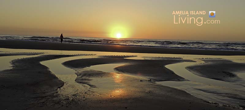 Amelia Island Tidal Pools, Sunrise Beach Walk
