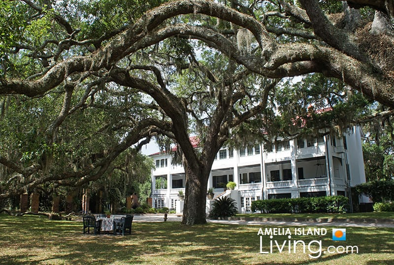 Ancient Oaks Embrace The Greyfield Inn, Cumberland Island