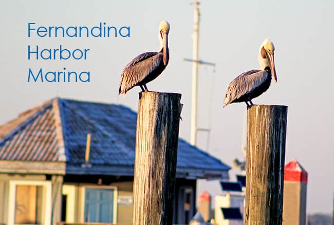 Fernandina Beach Harbor Marina