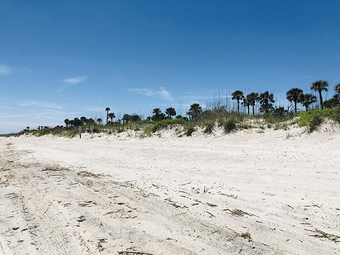 Developer Conducting Due Diligence, 50-Acre Oceanfront Parcel, Amelia Island's South End