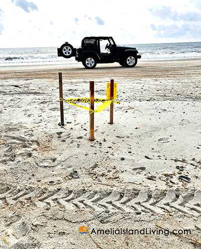 Potential changes coming to Amelia Island Beach driving regulations
