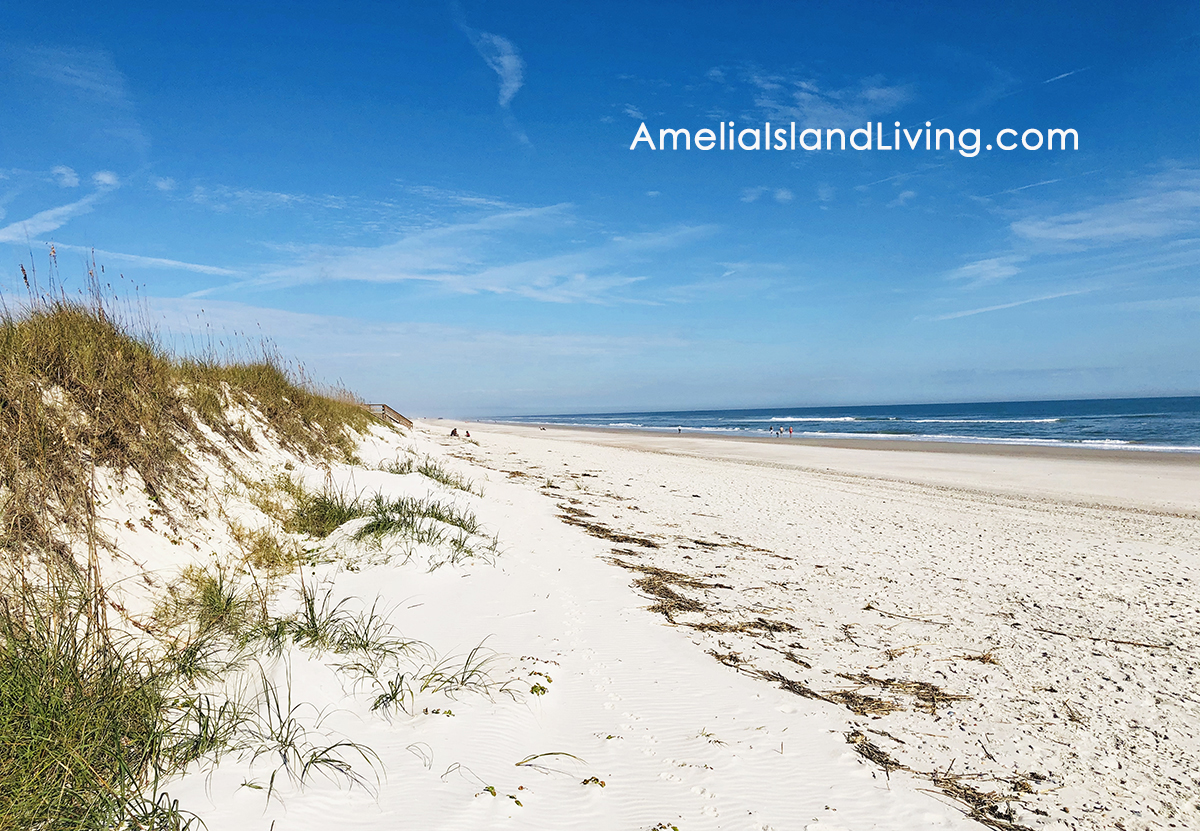 Amelia Island beach and dunes. Photo by AmeliaIslandLiving.com