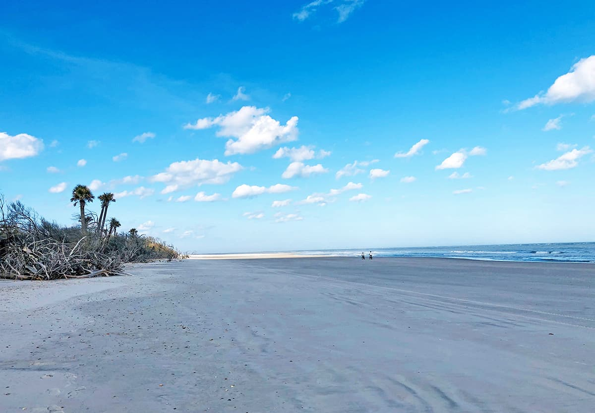 Florida beach scene, Little Talbot Island