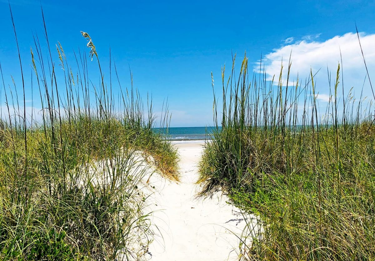Amelia Island Living magazine beach access sandy path coastal dunes. Photo by AmeliaIslandLiving.com
